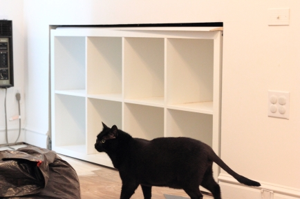 The Kallax just roughed in, before we get the trim and stuff up. Peanut The Cat is very excited about the cubbies. Cats + Cubbies are a natural combo.